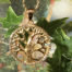 Tree of Life Stainless Steel with 14kt gold overlay